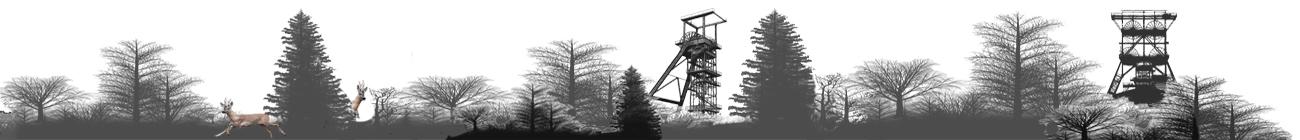 fahrzeugfabrik westfalia wiedenbrück